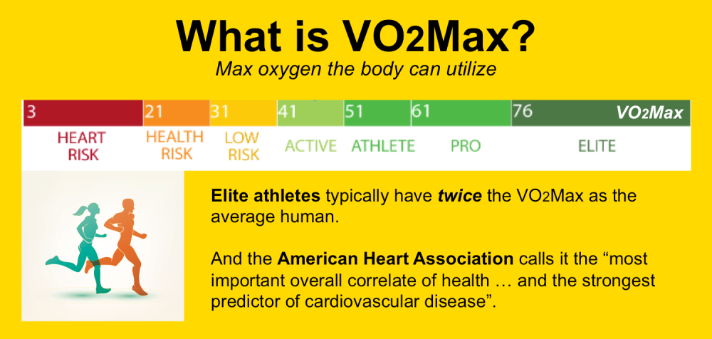 VO2Max (3)
